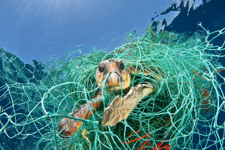 fishingnets_3